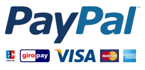 paypal_big300